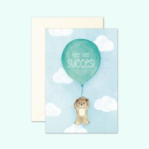 kaartenset-beertje-succes