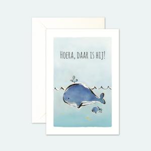 kaartenset-geboorte-jongen